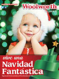 Vive una Navidad Fantástica - Invierno