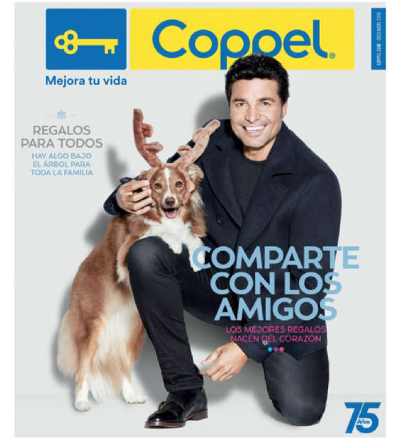 Ofertas de Coppel, Folleto Enero