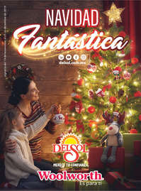 Navidad Fantástica - NL