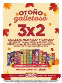 Otoño Galletoso - MONTERREY 2