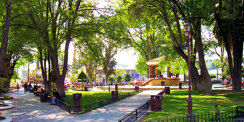 Catálogos y ofertas de tiendas en Tecate
